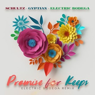 Promise For Keeps by Matthew Schultz X Gyptian X Electric Bodega Download