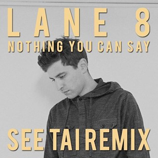 Nothing You Can Say by Lane 8 ft Lucy Stone Download