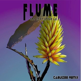 Say It by Flume ft Tove Lo Download