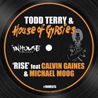 Rise by Todd Terry & House Of Gypsies Download