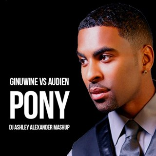 Pony by Ginuwine vs Audien Download