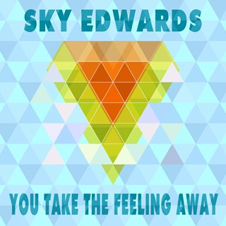 You Take The Feeling Away by Sky Edwards Download